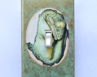 Dinosaur Switch Plates w/ MATCHING SCREWS- Jurassic Park switch covers T Rex Brontosaurus boys room dino wall decor dinosaur eggs