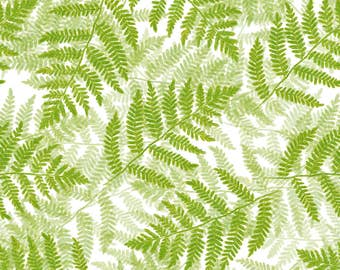 Green Watercolor Fern Fabric - Ferns On White By Weavingmajor - Green Watercolor Boranical Fern Cotton Fabric By The Yard With Spoonflower
