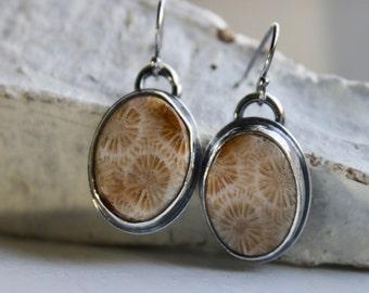 Agatized Coral Earrings, Fossil Earrings, Sterling Silver Earrings, Rustic Artisan Earrings