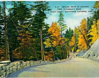 Vintage Postcard - Autumn in the Great Smoky Mountains (Unused)