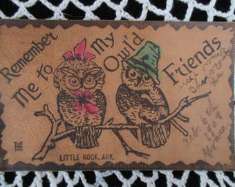 Antique from the 1900's  Leather Postcard  ~ used Postcard  Owls on a Branch Little Rock,Ark