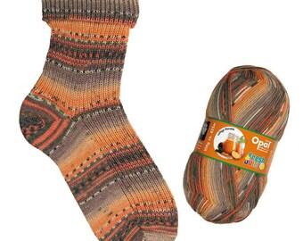 Opal Sock Yarn Fresh & Juicy, 100g/465yd, 9361