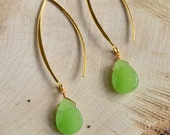 Fern Green Long Earrings