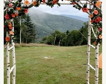 On Sale Chuppa / wedding arch / Arbor  /  Birch Poles