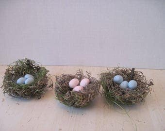 3 Spanish Moss Bird Nests with Clay Eggs