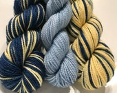 Brilliant Mistake Polar Opposites with Contrast... Canon Hand Dyes Charles Self Striping Superwash Sock Yarn