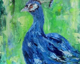 "Peacock bird impasto palette knife original oil painting on 11"" x 14"" canvas by Sandra Cutrer Fine Art"