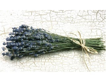 Sale DRIED ENGLISH LAVENDER Flower Bunch Dried bouquet lavender bouquet Fragrant Lavender Dried Flowers Bouquet Wedding Flowers Shabby Prim