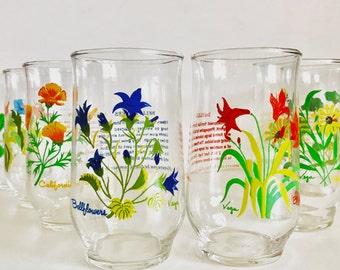 Vintage Vega Glass Set - Boho Floral Juice Glasses