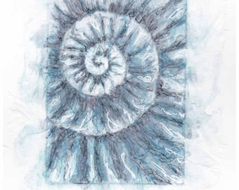 Original ammonite fossil zinc etching no.97 with mixed media jurassic Dorset coast fossil spiral fossil ammonites golden section