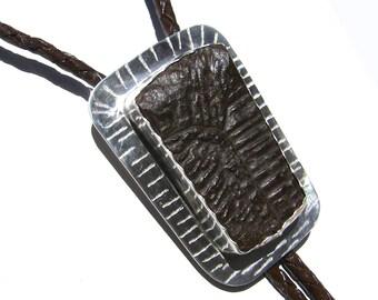 Reptilian Bolo Tie: Fossil Turtle Shell w/Snake Tips