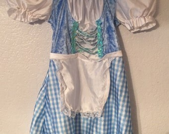 Adorable 3t-4t Wizard of Oz Dorothy Costume