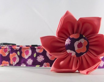 Dog Collar  with Flower - Flower Edging- All Sizes