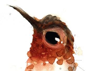 12 x 12 Bird Art, Rufous Hummingbird, Bird Art Print