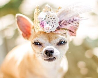 Dreamcatcher lace crown headband for small dog cat pet || boho feather crown || photography prop