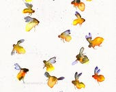 watercolor 'Fire Honey' Honey Bee - 11x14 inch print