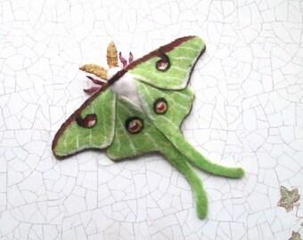 Needle Felte brooch Luna Moth felt butterfly felted moth