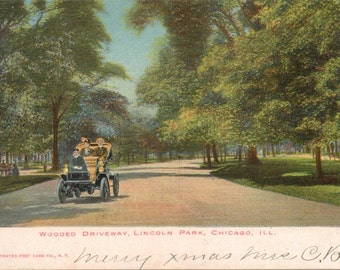 """Illinois, Vintage Postcard, """"Wooded Driveway, Lincoln Park, Chicago, Illinois,""""  1910, #1025."""
