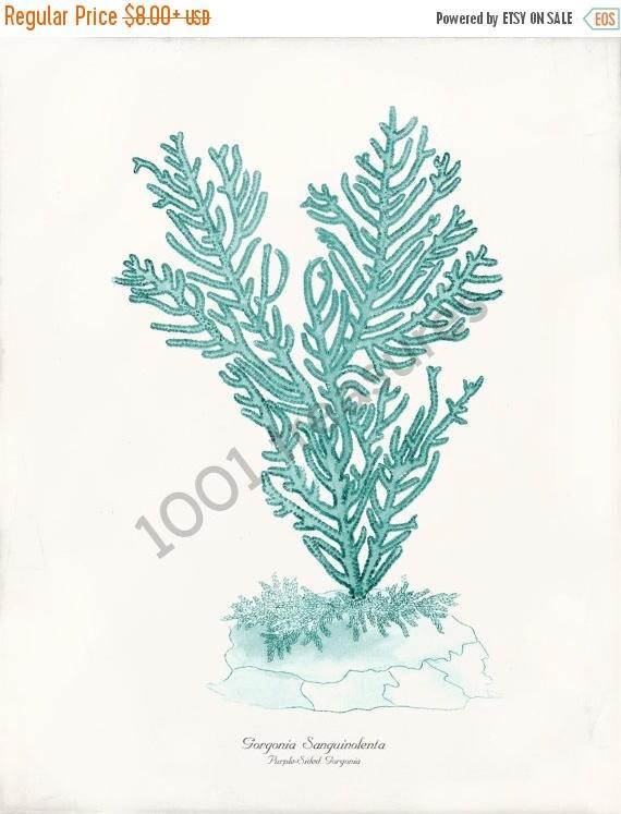 SPRING SALE Antique Coral Art Print - Gorgonia Teal - Natural History - Beach Decor - Home Decor