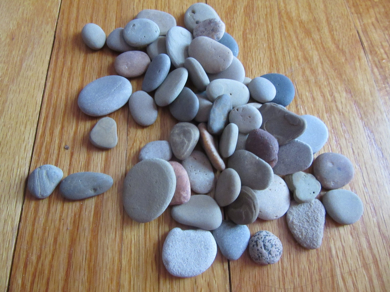 Lot of 50 flat stones lake michigan stone craft mosaic stone for Flat stones for crafts