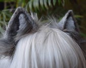 small grey fox/wolf ears