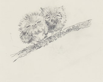 Original Sketch 'Owls In Tree'