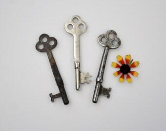 Vintage Skeleton Keys - The Three Musketeers - Three of a Kind Rusty Old Skeleton Keys