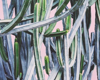 Cactus Print, Green and Pink Cactus Artwork, Palm Springs Art, Mid Century Modern Artwork, Large Wall Art, Nature Picture