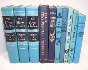 Vintage Lot of Books In Shades of Blue (10) For Decor And Reading