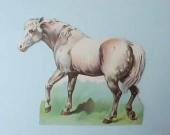 Pretty Victorian Era Horse Scrap