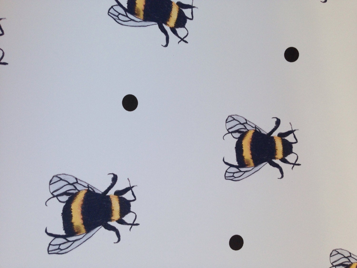 bumble bee bee wrapping paper gift wrap for bee lovers. Black Bedroom Furniture Sets. Home Design Ideas
