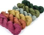 SW Merino/YAK/silk  ( 60/20/20)  -Fingering- Naturally Dyed Yarn Mini Skein Set - 118 g.