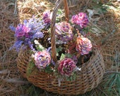 Pink Pine Cone Flowers on Stems****Hand Painted Cones with Dried Flowers****Variable Shades of Pink***Fairy Fantasy Flowers