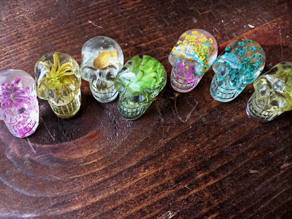 Set of 2 (two) Miniature Resin Skulls, Preserved Nature enclosed within ~ free shipping!