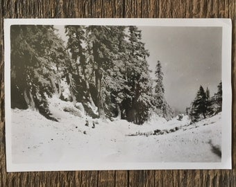 Original Vintage Photograph Travelers Pass