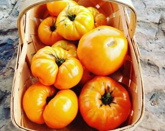 Heirloom Tomato Seeds, Yellow Tomatoes, Kellogg's Breakfast Tomato, Beefsteak Tomato Seed, Open Pollinated Non GMO, Great for Market Gardens
