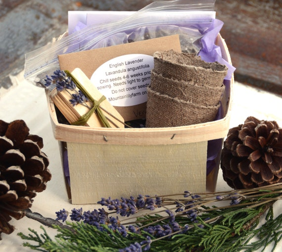 Herb Seed Kits