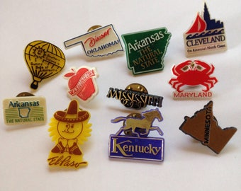 Vintage State Lapel Pin - Plastic - USA - City souvenir - collectible - Free Shipping
