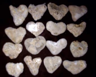 16 XL Heart Shape Beach Stones, Aquariums, bridal shower gifts Weddings, Crafts