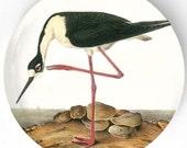 Audubon Bird, Stilt melamine plate