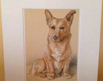 SALE Vintage mounted 1939 Lucy Dawson Dookie corgi Royal dog plate print Unique gift