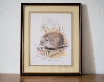 Hedgehog Print - Hedgehog Illustration