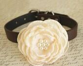 Ivory Floral dog collar, Wedding dog collar, Dog birthday gift, Pet wedding accessory, flower with Pearls, Wedding dog collar, Ivory wedding