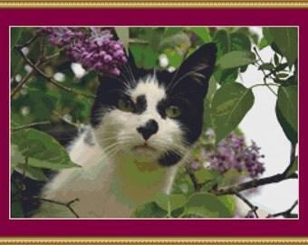 Black And White Cat Cross Stitch Pattern