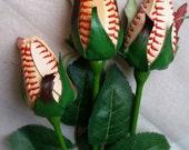 Vintage baseball Sport bud roses.