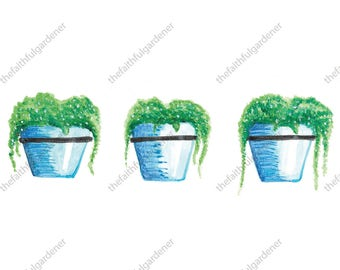 Three Blue Pots with Ivy Watercolor Art Print