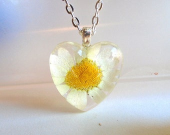 Real White Daisy Pressed Flower  Heart Glass Necklace