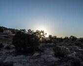Desert Sunburst in Arizona Fine Art Photography Print, Landscape Photograph, Wilderness Photo, Nature Photograph