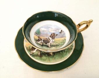 REGENCY SPRINGER SPANIEL Wide Mouth Teacup - England - Hunting Scene - Bird Dog and Game Birds