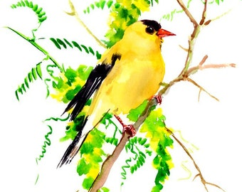 American Goldfinch yellow bird art goldfinch art finch lover painting 10 x 8 in yellow green nirsery children wall art
